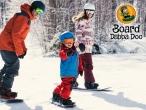 20 Board Dabba Doo